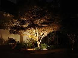 Landscape Lighting Trees Tulsa Landscape Lighting Lighting