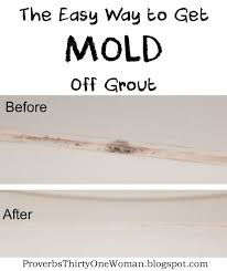 Grout Cleaning Tips 25 Unique Clean Shower Grout Ideas On Pinterest Shower Grout