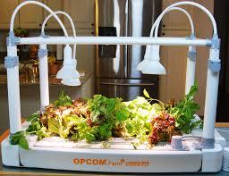 more herbs more indoors millennials shape gardening trends for