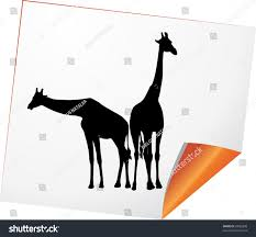 silhouettes two giraffes on paper vector stock vector 93093898