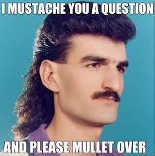 Question Meme - i mustache you a question and please mullet over i mustache you