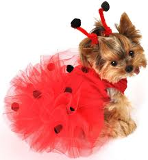 dog custumes halloween pet costumes puppy costume ladybug