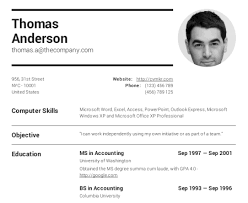 Sample Resume Of It Professional by Download A Professional Resume Haadyaooverbayresort Com