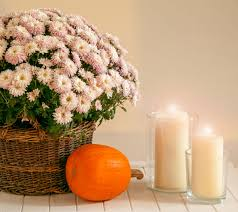 creative home decor ideas to get your house ready for fall