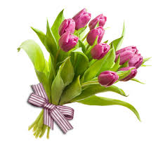 Tulip Bouquets Tulip Bouquet U201cpower Of Love U201d U2013 Flowers Bouquets Shop