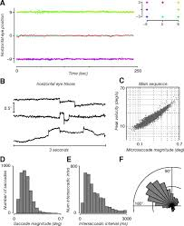 modulation of visual responses by gaze direction in human visual