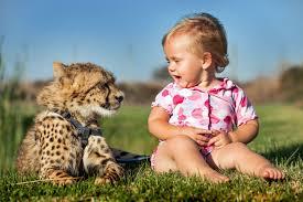 cheetahs best friends with children youtube
