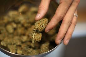 Medical Power Of Attorney Nj by Recreational Pot Could Become Legal In Nj Under New Bill Nbc 10