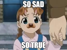 Fullmetal Alchemist Memes - fullmetal alchemist dog girl imgflip