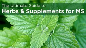 Plants Diseases And Treatment - natural remedies for ms 59 vitamins and supplements