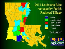 Map Of Louisiana Parishes by Rice Acreage Maps