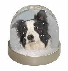 australian shepherd ebay border collie dog snow dome photo globe waterball animal gift ad