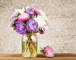 florist gainesville fl the flower shop gainesville fl best flower 2017