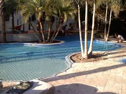 Backyard Pool Safety by Clearwater Swimming Pool Safety Net Pool Fencing Tampa Fl