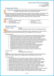 Professional Cv Template Example Of A Good Cv
