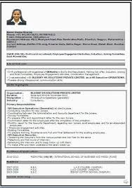 Sample Hr Executive Resume by Resume Format For Msc Mathematics Resume Format