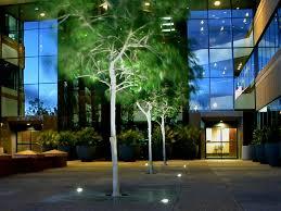 tree grate up light