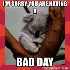 Having A Bad Day Meme - i m sorry you are having a bad day sad koala meme generator