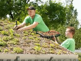 garten und landschaftsbau ausbildung ausbildung im garten und landschaftsbau ideal für