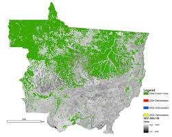 Map Of The Amazon River Nasa Satellite Measures Deforestation Image Of The Day