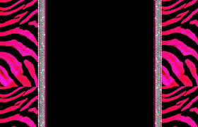 girly computer wallpapers zebra desktop wallpapers group 80