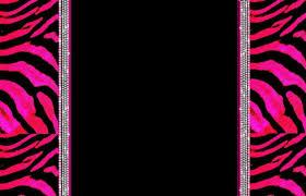 computer backgrounds girly zebra desktop wallpapers group 80