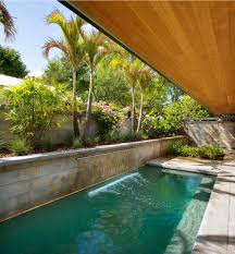 palm tree near pool retaining wall pool tropical with deck to pool
