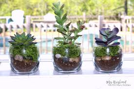 dollar store faux succulent planters