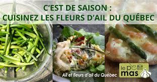 cuisiner l ail c est de saison cuisinez les fleurs d ail du québec le petit