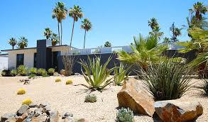 smart desert landscaping palm springs real estate