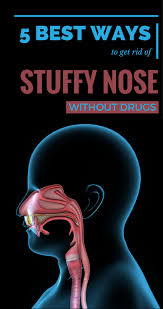 5 best ways to get rid of stuffy nose without drugs womenideas net