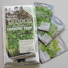microgreens growing kit johnsons seeds vegetable seeds