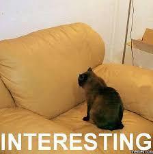 Modern Art Meme - modern art meme пошук google fun pinterest modern art and meme