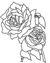 printable coloring pages roses long stem rose coloring page free