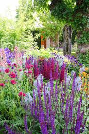 pictures of beautiful gardens with flowers 1466 best flower garden pictures images on pinterest plants