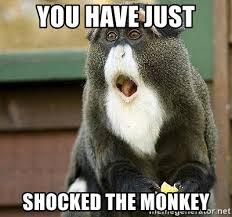 Shock Meme - you have just shocked the monkey monkey shock meme generator