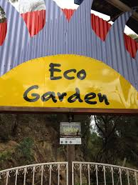 native plant nursery terrey hills eco activities in sydney sydney