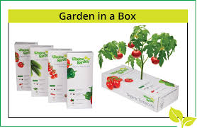 amazon com window garden organic cucumber grow kit easy to