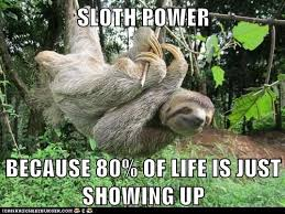 Sloth Jokes Meme - animal capshunz sloths funny animal pictures with captions