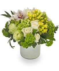 garden of eden flower shop veldkamp u0027s flowers denver florist fresh cut flowers