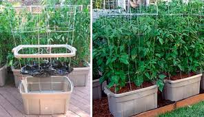 earthtainer self watering storage container gardening apartment