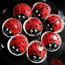 84 best lady bugs images on pinterest anniversary parties
