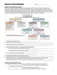 Cranial Nerves Worksheet Nervous System Worksheet Jackson County Faculty Sites