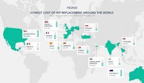 cost of australian shepherd hip replacement abroad guide costs u0026 patient review medigo blog