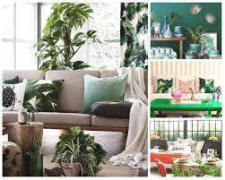 Tropical Decor Save Vs Splurge Trendy Tropical Decor Ideas Camdenliving Com