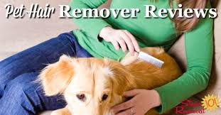 on the shelf pets pet hair removers reviews which products work best