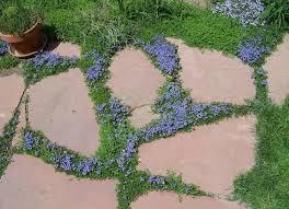 Landscaping Ideas For Backyard Backyard Landscape Ideas 8 Lawn Less Designs Bob Vila