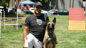 belgian shepherd los angeles dogs with a bad rap learn to be polite with this la nonprofit