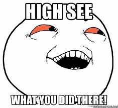 I Know What You Did There Meme - high see what you did there high i see what you did there meme