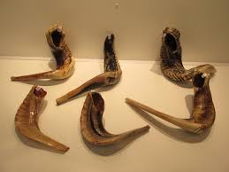 where to buy shofar rams horn shofars
